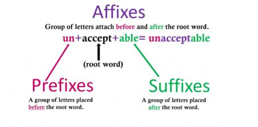 Scientific Root Words, Prefixes, And Suffixes! Trivia Quiz