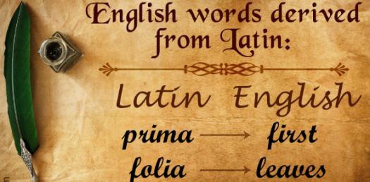 Quiz On English And Latin Consonant Declension! Test