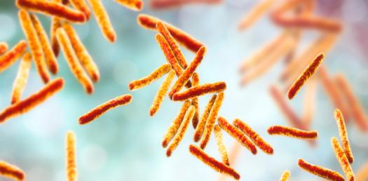 What Do You Know About Mycobacterium? Trivia Quiz