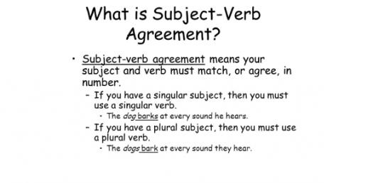 Subject Verb Agreement Test Quiz!