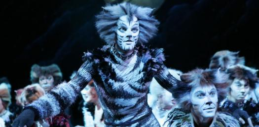 Cats The Musical Quiz