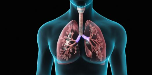 Quiz: Lung Function Test For Asthma