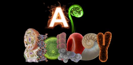 AP Biology Exam: Trivia Questions On Introduction To Biology! Quiz