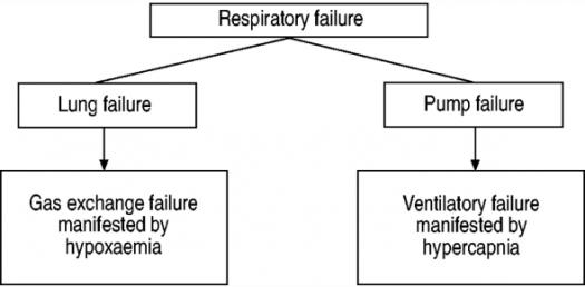 Quiz: What Do You Know About Respiratory Failure? Trivia Questions