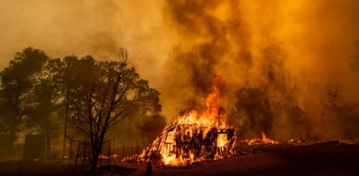 What Do You Know About Wildland Fire? Trivia Questions Quiz