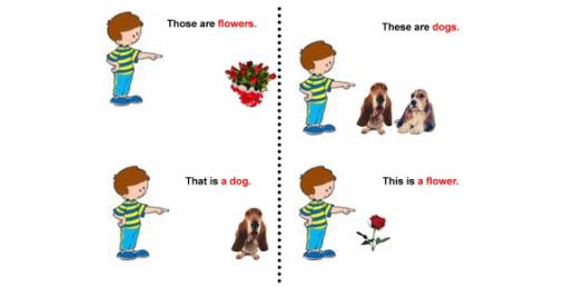 Demonstrative Pronouns Quiz: This/These/That/Those