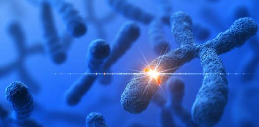 Biology Quiz: Types Of Genetic Mutations!