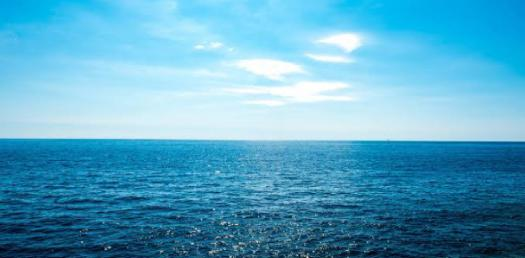 Ocean Quiz: Can You Pass This Test?