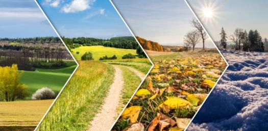 Which Of The Seasons Are You? Personality Quiz