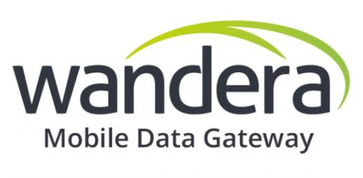 Trivia Quiz On Wanderas Secure Mobile Gateway Company!