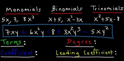 Monomials And Polynomials! Algebra Trivia Questions Quiz