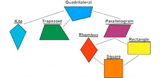 Can You Pass This Quadrilaterals Test? Geometry Trivia Quiz