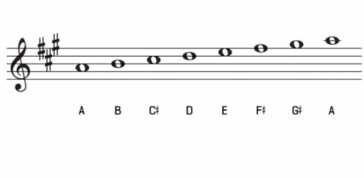 Music Notation: Can You Identify The Key Signature? Quiz