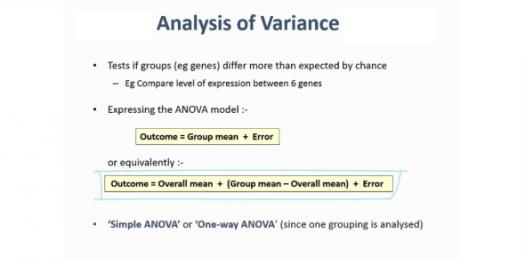 What Do You Know About Analysis Of Variance? Trivia Quiz