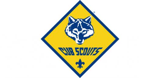 How Much Do You Know About Cub Scouts? Trivia Quiz