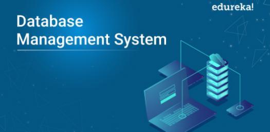 Database Management System! Trivia Questions Quiz