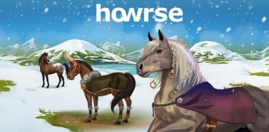 Video Game: Take The Ultimate Howrse Quiz!