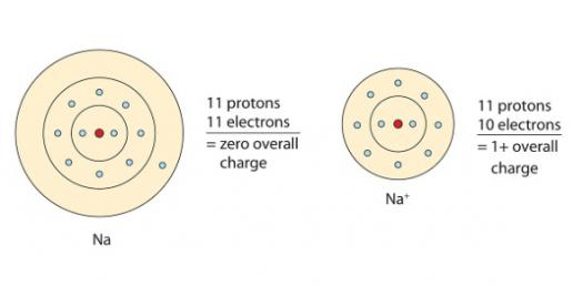 Can You Identify The Covalent And Ionic Bonds? Quiz
