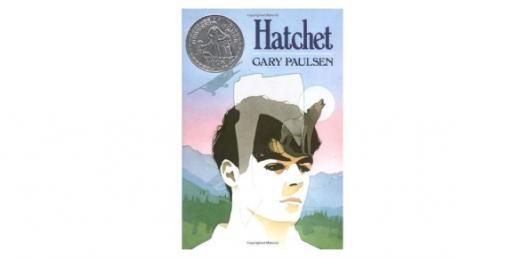Chapter 17: Hatchet Novel Trivia Questions! Quiz
