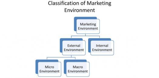 Mktg320 Chapter 4 Quiz: Marketing Enviornment