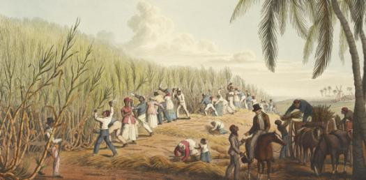 Quiz: A History Of The Western Colonial Period