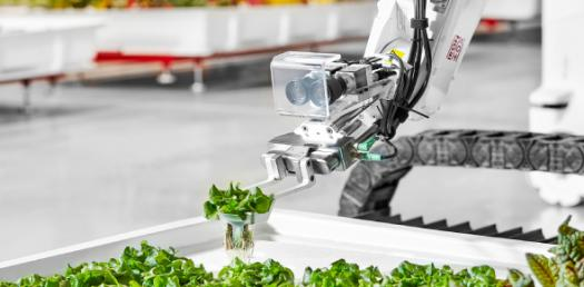 Food Trends- Food Technology
