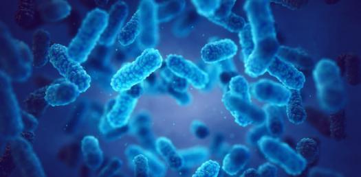 Microbiology Quiz Questions! Trivia Test