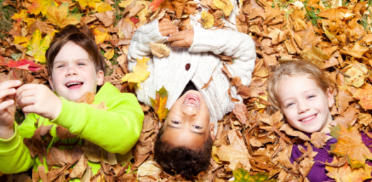 What Is Your Favorite Activity During Fall?