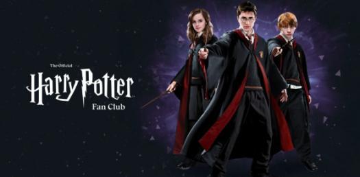 Harry Potter Quiz For Fans! Trivia Questions