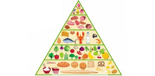 Test Your Knowledge About Food Pyramid