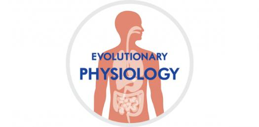 A Quiz On Physiology! Practice Test! Trivia
