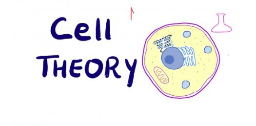 Cell Theory Trivia: Test Your Knowledge! Quiz