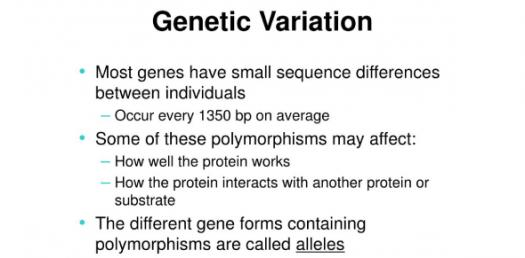 How Much You Know About Genetic Variation? Trivia Quiz