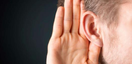 Parts Of The Ear Trivia: Identify The Parts! Quiz