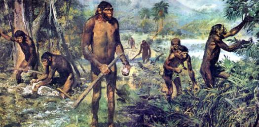 How Much You Know About Hominids? Trivia Facts Quiz