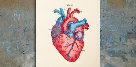 Heart Anatomy: Identify These Parts! Trivia Quiz