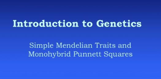 Introduction To Genetics! Trivia Questions Quiz