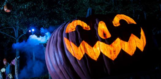 Halloween Trivia Facts And Questions! Quiz