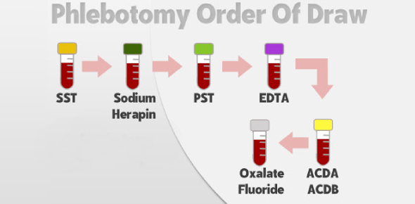 Order Of Draw Phlebotomy Chapter 7 Quiz