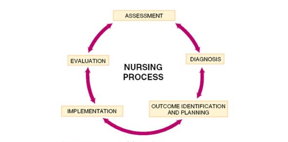Nursing Process MCQ Exam: Quiz