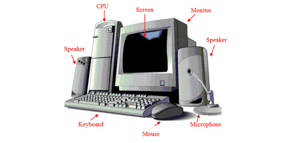 An Interesting Basics Of Computer Quiz!