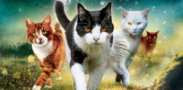 Warrior Cats Quiz: Who Are You?
