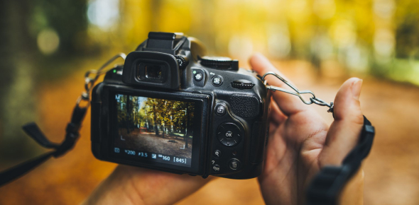 Digital Camera Picture Editing Quiz!