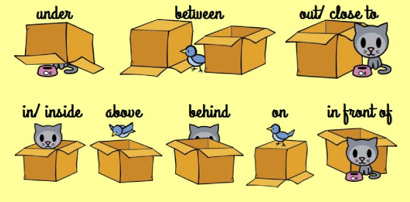 Prepositions Of Place (Beginner)