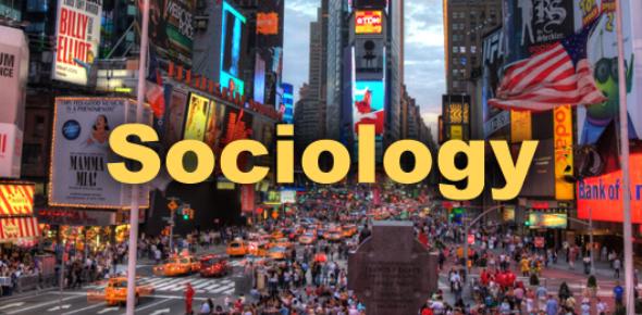 Sociology Practice Test! Trivia Quiz