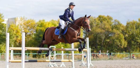 Are You A True Equestrian