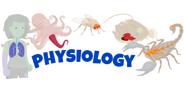 Physiology Chapter 1