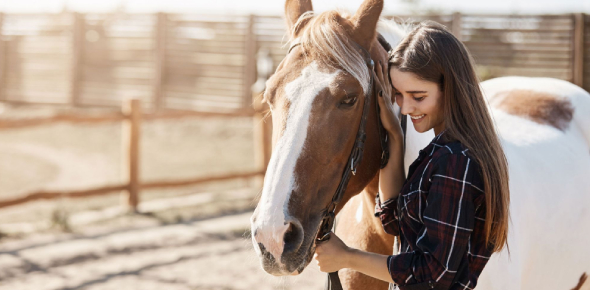 Are You Really Ready To Own A Horse?