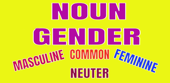 Gender Of Nouns! Trivia Questions Quiz