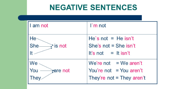 Practice Negative English Questions